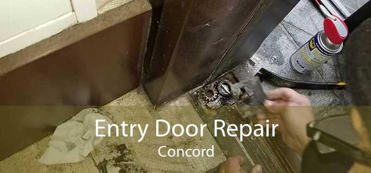Entry Door Repair Concord