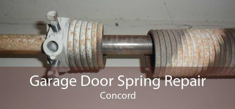 Garage Door Spring Repair Concord