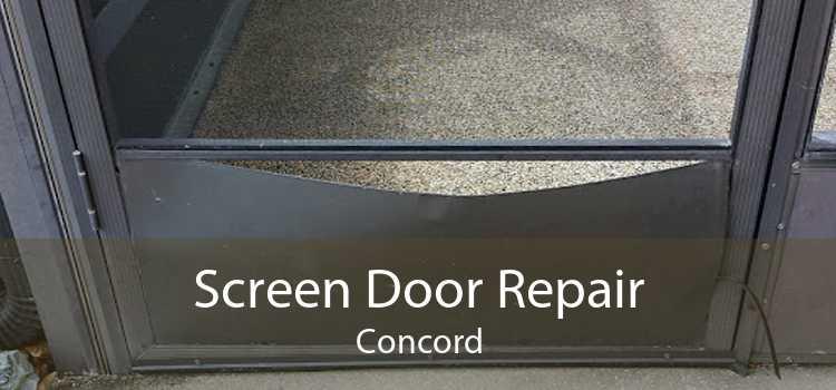 Screen Door Repair Concord